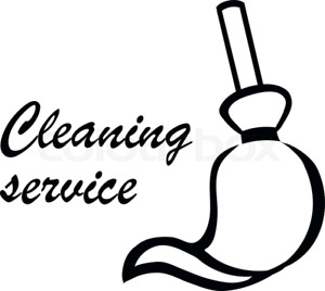 EXPERIENCED CLEANING LADY ORANGEVILLE