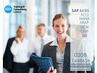 SAP TRAINING COURSES FICO HCM HR HANA BI HR