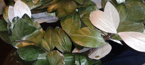 "1 Pottery Barn Magnolia green silver Christmas garland 72""  New"