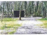 Birchgrove Bog