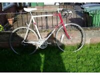 "Raleigh,Racing Bike,25""63cm Frame,700c Alloy Wheels,New Parts, SERVICED."