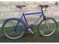 Edinburgh bike