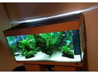 Juwel T8 replacement light unit for 100cm aquarium, Rio 180, Trigon 350, Rekord, etc