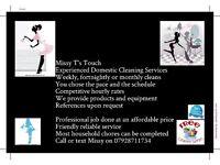 house cleaner/housekeeper