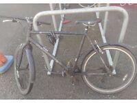 Used Revolution bike