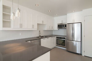 Downtown New 1 Bed- 3 1/2 - McGill / Concordia - Washer/dryer
