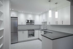 Fully Renovated Downtown 1 bed - 3 1/2 - Terrace/Gym/Doorman