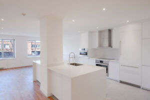 Luxury Downtown - Fully Renovated 3 Bed 3 Bath - Centre-ville