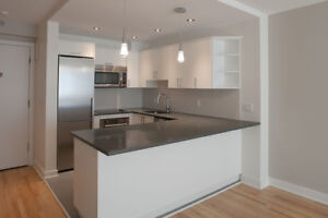 Renovated 1 bedroom - 3 1/2 rénové - near McGill / Concordia