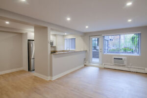 Renovated 2 Bed Apartment- Downtown / McGill / Concordia - 4 1/2