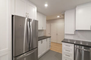 Large Kitchen- Fully Renovated 2 Bed 2 bath Apartment - Downtown