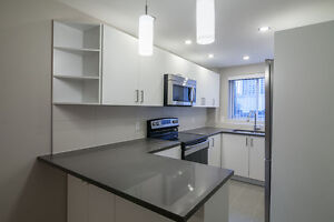 New 2 Bed Apartment- Downtown / McGill / Concordia - 4 1/2