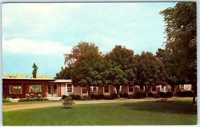 KALISPELL, Montana  MT    Roadside  TEEPEE LODGE MOTEL   Postcard for sale  Foresthill