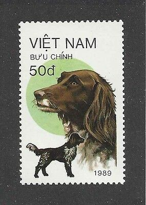 Dog Art Head Body Portrait Postage Stamp SMALL MUNSTERLANDER ENGLISH SETTER MNH