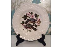 Vintage Alfred Meakin porcelain Band-tailed Pigeon plate Pattern #367