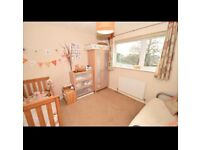 £ 500/month. Double room available about 5 minutes driving distance from blue water shopping centre
