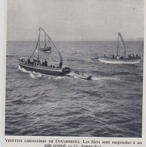 1953 -- VEDETTES SARDINIERES DE DOUARNENEZ 3G755 - France - 1953 -- VEDETTES SARDINIERES DE DOUARNENEZ 3G755 il ne s'agit pas d'une carte postale , mais d'un beau document paru EN 1953 le document GARANTI D'EPOQUE est en tres bon état et présenté sur carton d'encadrement format 105 X 95 mm FRAIS D ENVO - France