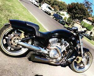 Harley V-rod Muscle Queenscliff Manly Area Preview