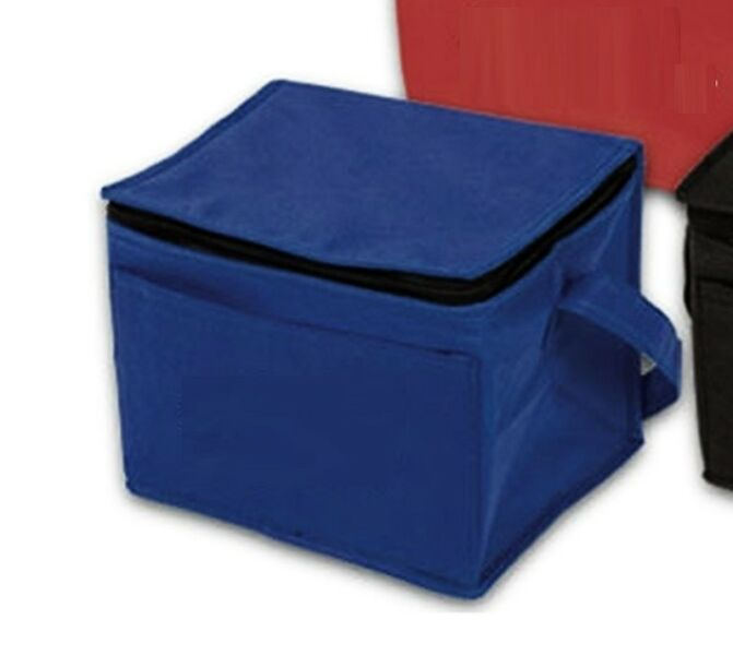 ~~~ 5 pieces NeW Mini CooLer/Thermo  Bags Set   $30  ~~~~