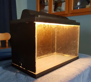 Used 10 Gallon Aquarium with canopy.