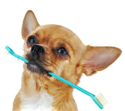 2PCS  Dog Dual-End Toothbrush Dental 2 Sided Brush  Reduce Plaque Pet Gadgets
