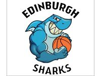 Edinburgh Sharks Basketball Club seek New Players (U8, U10, U12, U14)