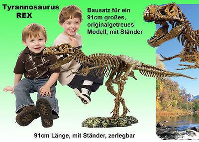 Riesen Dinopaket  T-Rex 91cm + 30cm Dino Bausatz + Fossilien gießen Lehrbuch