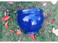 Royal Blue ceramic pots