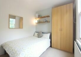 One double bedroom available to rent in Netheredge