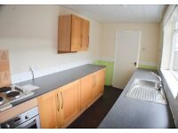 Two bedroom refurbished terraced house chopwell £350pcm