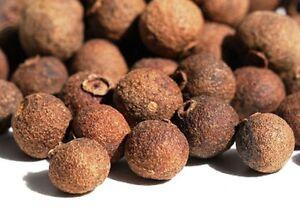 Jamaican Pimento Berries 10 Seeds Pimenta Dioica | eBay