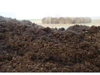 Free horse manure / compost