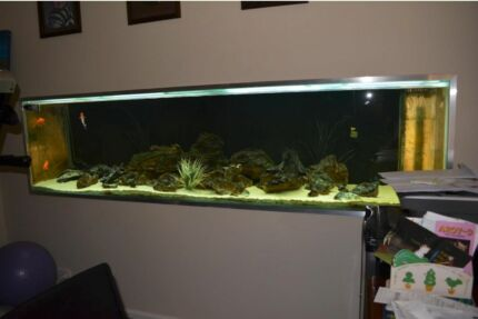 8ft x 2ft x 2ft Aquarium with 6ft Sump/stand GLASS ONLY Glenmore Park Penrith Area Preview