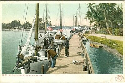 Miami FL  Sailboats on the Miami River 1905