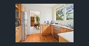Kitchen wooden doors used Chatswood Willoughby Area Preview
