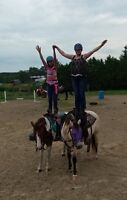 Riding Lessons for Kids and Adults!