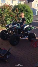 quadzilla 250cc road legal