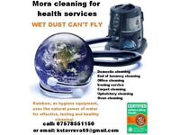 Mora DOMESTIC CLEANING services