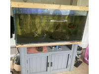❌ SOLD ❌4ft x 2ft full fish tank setup with unit!