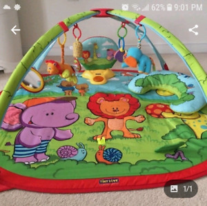 Animal zoobaby play gym