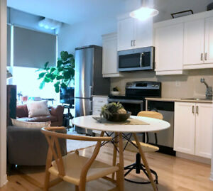 Condo near Place-des-Arts FOR SALE, Ville Marie Montreal