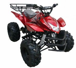 110cc kids atv 125cc kids atv SEPTEMBER SALE 905 665 0305