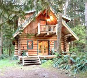 Mt. Baker Lodging - Cabin #10 - FIREPLACE, WIFI, SLEEPS-8!