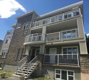 Centrally located, Newly renovated 2bed 1bath - Sept 1st