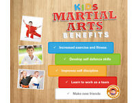 Childrens Martial Arts Free Trial Session