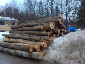 FIREWOOD LOGS 14ft lengths Pure Hardwood