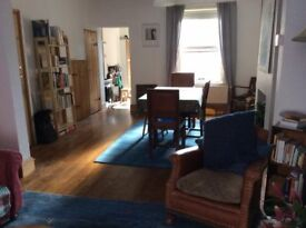 Big Beautiful Double Room in St George
