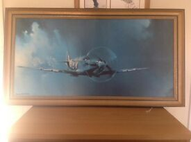 Spitfire picture