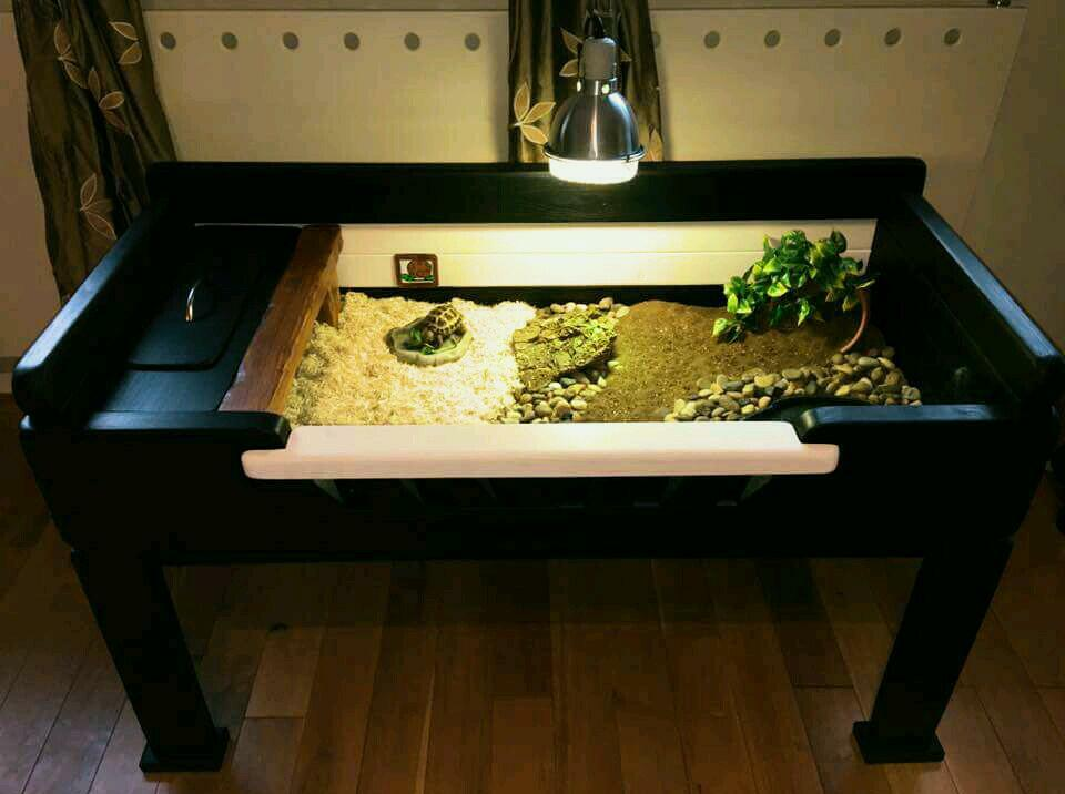 Tortoise Table Vivarium Luxury Timber Furniture
