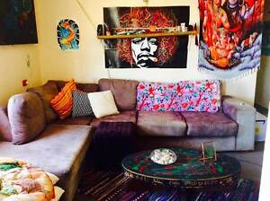 Cosy gypsy hippie beach house Maroubra Eastern Suburbs Preview